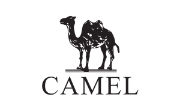 All Camel  Coupons & Promo Codes